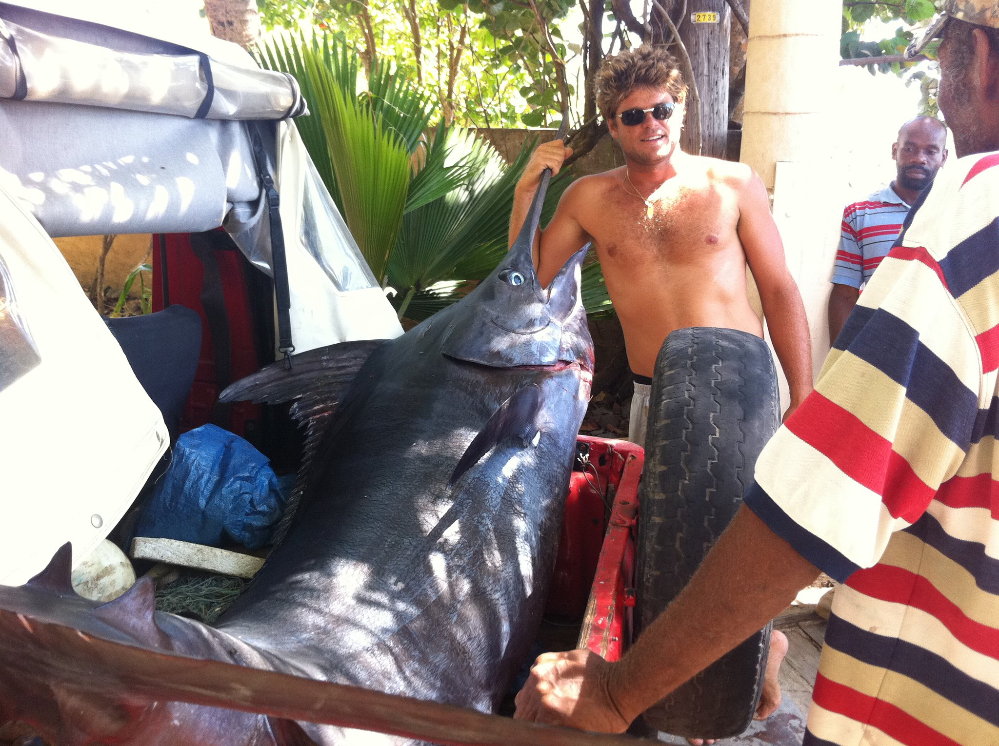 And one more Marlin for Sebastien